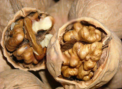 Five nuts to improve your physical quality in winter